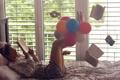 Картинка книга, девушка, воздушные шарики