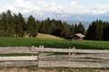 Картинка пейзаж, горы, дом, забор