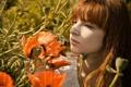 Картинка девушка, цветы, маки, веснушки, шатенка, кареглазая