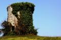 Картинка небо, трава, башня, руины, плющ