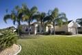 Картинка трава, город, дом, пальмы, фото, газон, Флорида