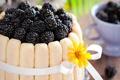 Картинка ежевика, желтый, еда, ягоды, цветок, сладкое, десерт