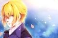 Картинка лепестки, сакура, парень, Hakuouki, демоны бледной сакуры, Chigake Kazama, Hekketsu-roku