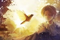 Картинка птица, Аниме, черные волосы, короткие волосы, shingeki no kyojin, attack on titan, эрен