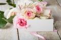 Картинка розы, букет, pink, flowers, soft, roses