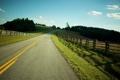 Картинка дорога, поле, солнце, лучи, деревья, пейзаж, природа