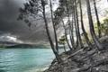 Картинка деревья, пейзаж, озеро