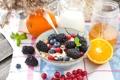 Картинка цитрус, хлопья, citrus, cereals, Здоровый завтрак, мюсли с молоком и фруктами и ягодами, muesli with ...