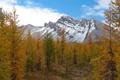 Картинка осень, облака, снег, деревья, горы