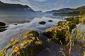 Картинка клен, облака, осень, холмы, озеро, листья, отражение