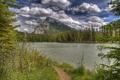 Картинка лес, облака, деревья, озеро, берег, гора, тропа