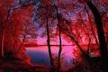 Картинка осень, небо, деревья, закат, река, фильтр