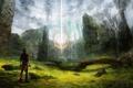 Картинка лес, свет, камни, магия, путешественник, храм, парень