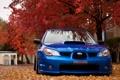 Картинка осень, природа, листва, Subaru