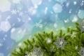 Картинка снег, украшения, снежинки, иголки, ёлка
