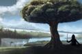 Картинка пейзаж, созидатель, дерево
