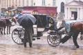Картинка снег, город, зонтик, люди, кони, водитель, такси
