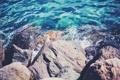 Картинка лето, вода, камни, большие