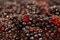 Картинка макро, ягоды, macro, ежевика, berries