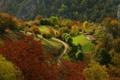 Картинка зелень, пейзаж, природа