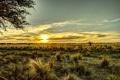 Картинка поле, небо, трава, рассвет, горизонт, Аргентина