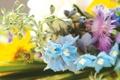 Картинка цветы, фото, обои, букет, весна, ярко, нежно