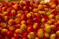 Картинка черешня, много, макро, ягоды