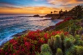Картинка California, Laguna Beach, sunset