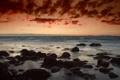 Картинка море, небо, облака, водоросли, камни, Закат