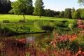 Картинка поляна, пруд, фото, парк, забор, дерево