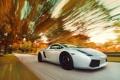 Картинка Gallardo, осень, Lamborghini, скорость, дорога