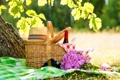 Картинка трава, скатерть, пикник, лето, природа, букет, шляпа