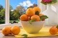 Картинка окно, миска, листики, мандарины