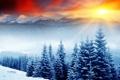 Картинка лес, солнце, снег, ёлки, сопки