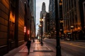 Картинка фонари, вечер, улица, огни, город, Иллиноис, небоскребы