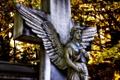 Картинка крылья, крест, ангел