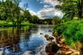 Картинка трава, облака, деревья, мост, река, камни