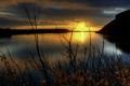 Картинка лес, закат, ветки, озеро