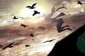 Картинка птицы, vocaloid, вокалоид, bird, miku, hatsune