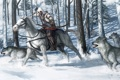 Картинка зима, снег, лошадь, волки, Assassin's Creed III, Коннор Кенуэй
