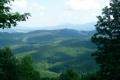 Картинка лес, лето, природа, фото, карпаты, говерла