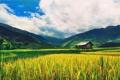 Картинка поле, небо, горы, дом, долина