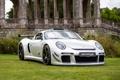 Картинка Porsche, Grass, Front, White, CTR 3, RUF
