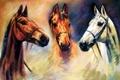 Картинка животные, глаза, взгляд, живопись, три коня