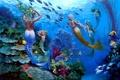 Картинка рыбы, подводный мир, русалки, Wil Cormier