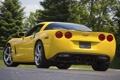 Картинка лес, деревья, желтый, тюнинг, Corvette, суперкар, шевроле