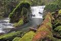 Картинка камни, река, водопад, бревно, лес, мох