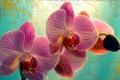 Картинка цветок, макро, цветы, бутон, flowers