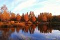 Картинка осень, лес, небо, листья, облака, пейзаж, река