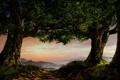 Картинка дорога, деревья, туман, маяк, вечер